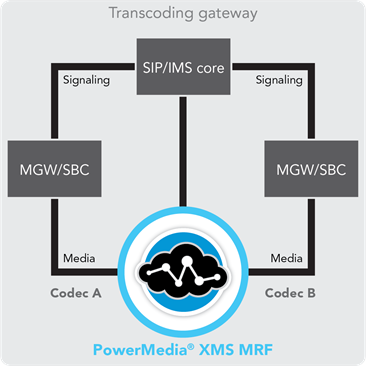 Software Transcoding Gateway - Broad audio and video codec support including fixed, mobile, and web-based codecs